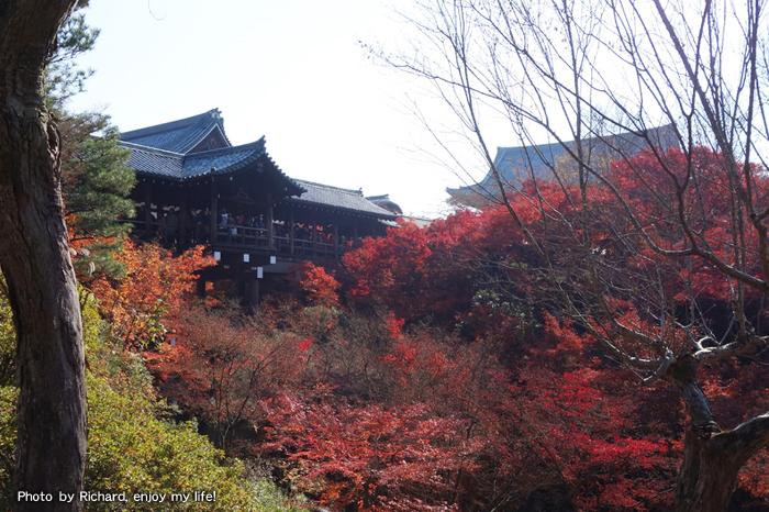 Tofukuji -temple