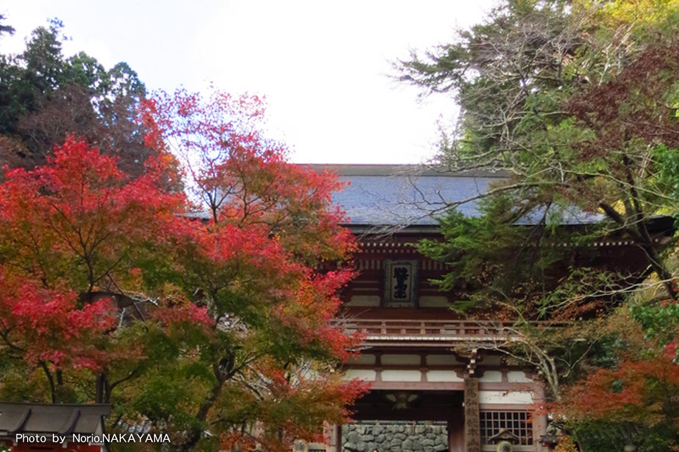 Kuramadera-temple